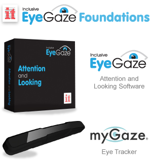 What's Included with Inclusive EyeGaze Foundation